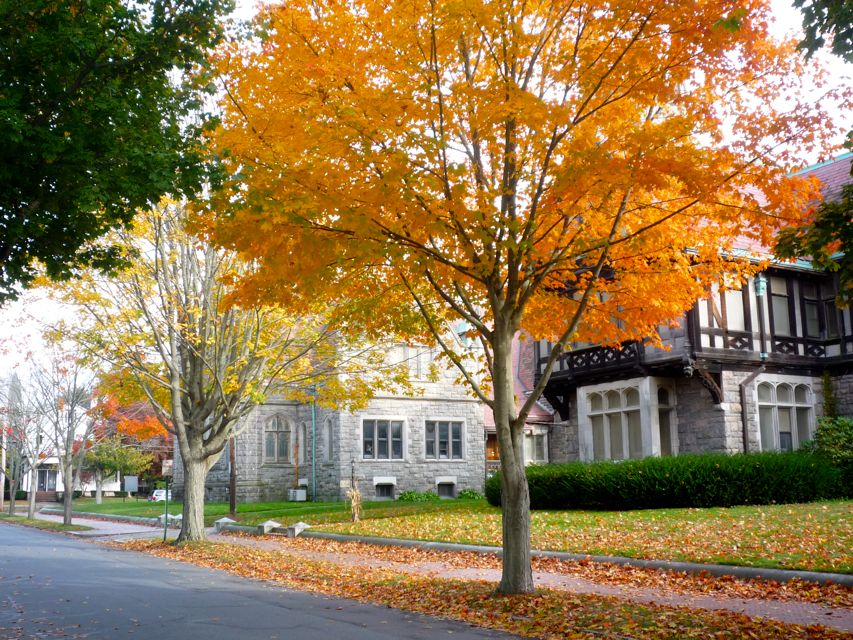 Photo of fall in Fairhaven MA