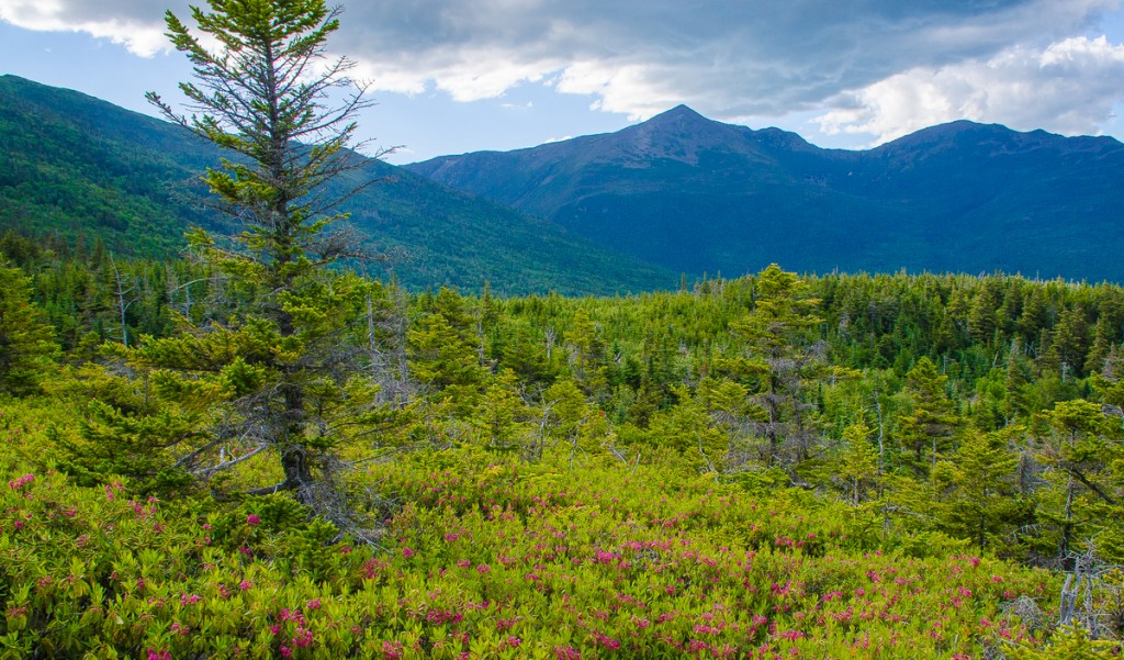 Mount Washington Valley in New Hampshire.. Photo by: Dan Houde/Wiseguy Creative
