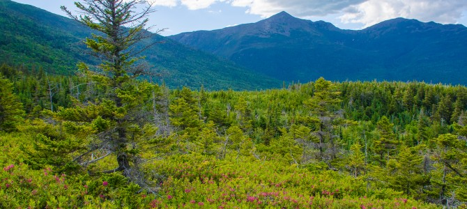 Scenic Drives and Overlooks in New Hampshire's Mt. Washington Valley