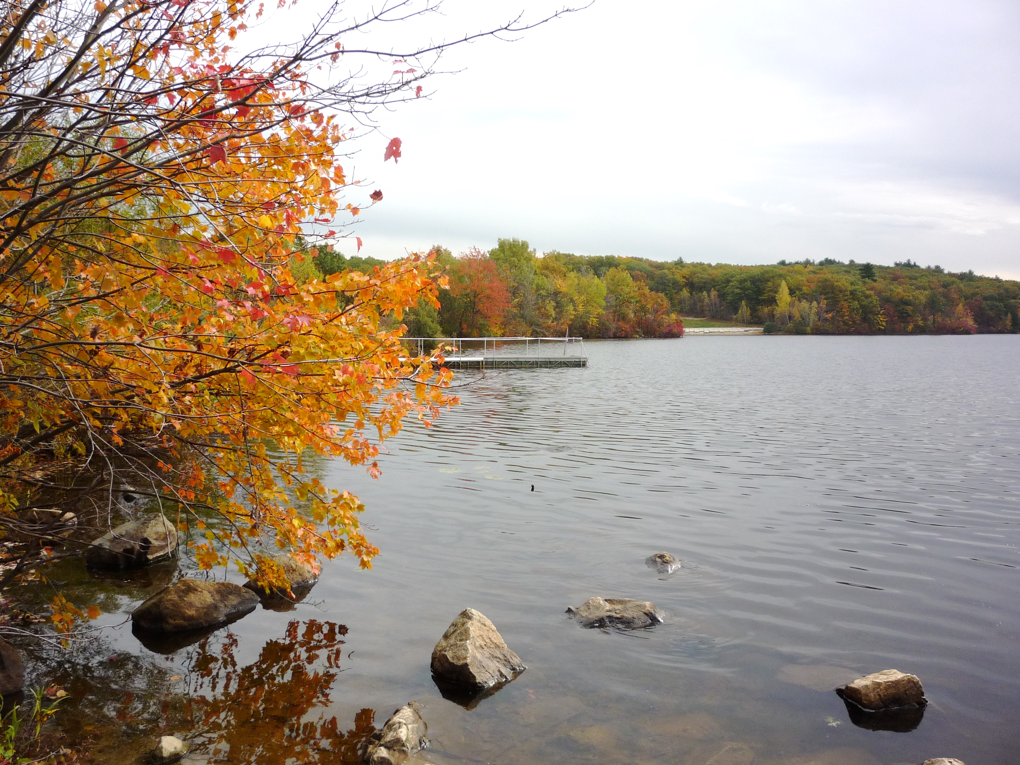 Explore the Neponset River Watershed Near Boston