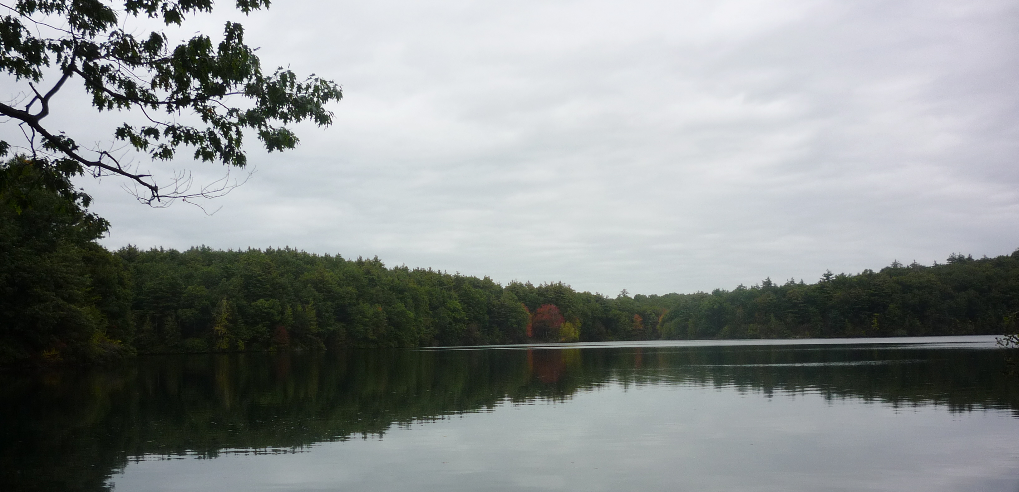 "A ""Thoreauly"" Good Bargain for Admission to Walden Pond, Concord, Mass."
