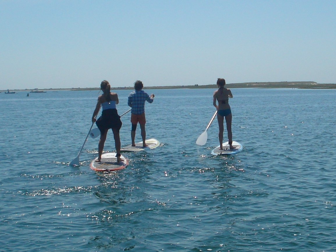 Cape Cod Summer Travel Ideas: Paddle Boarding Excursions and Demonstrations