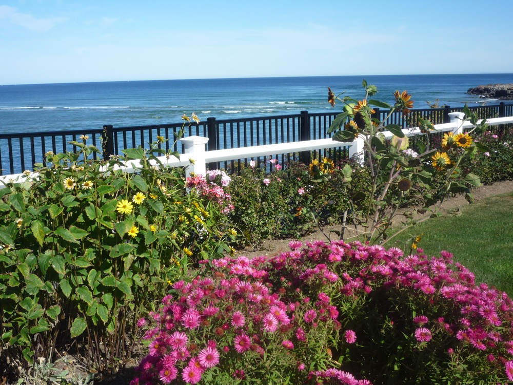 Colorful garden juxtaposed with Marginal Way and the ocean in Ogunquit, Maine.. Photo: Eric