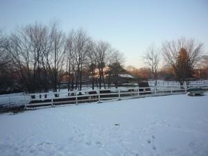 Photo of winter at Adams Farm, Cumberland, R.I.