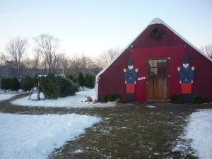 Photo of Adams Farm, Christmas, Cumberland RI