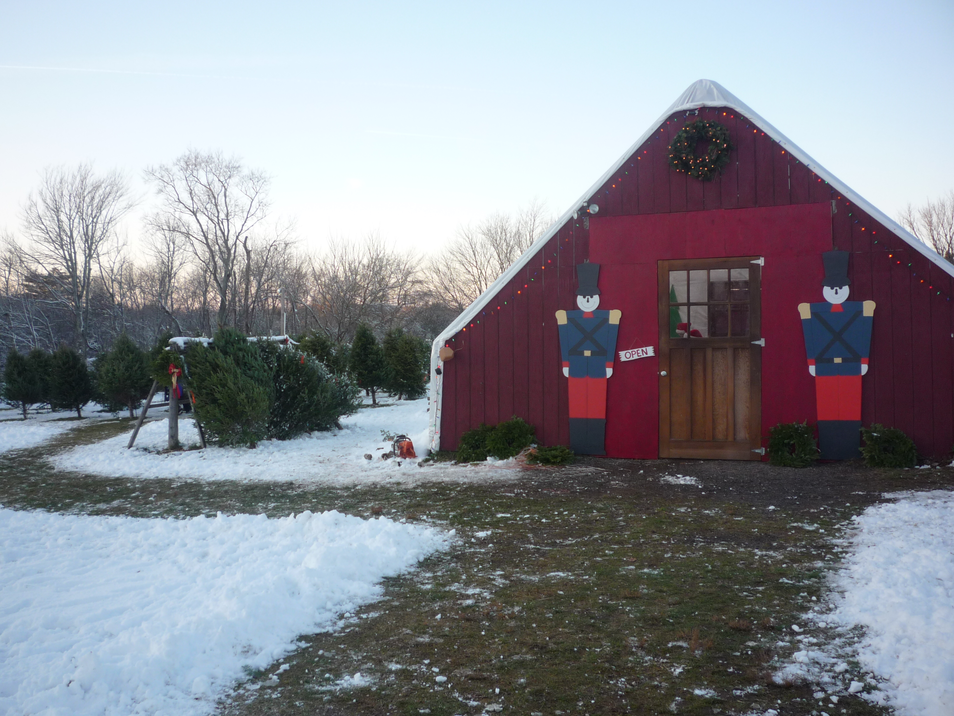 Christmas Trees and a Special Holiday Feeling at Adams Farm, Cumberland, R.I.
