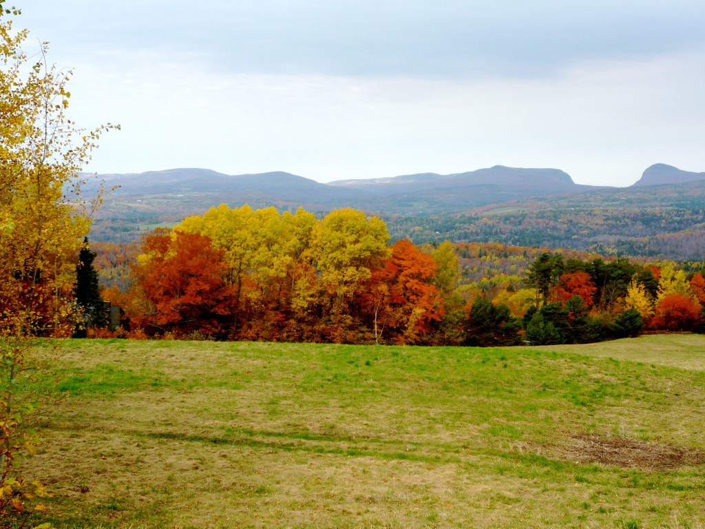 Photo of view from Mid-Burke Mountain, Northeast Kingdom, Vt.