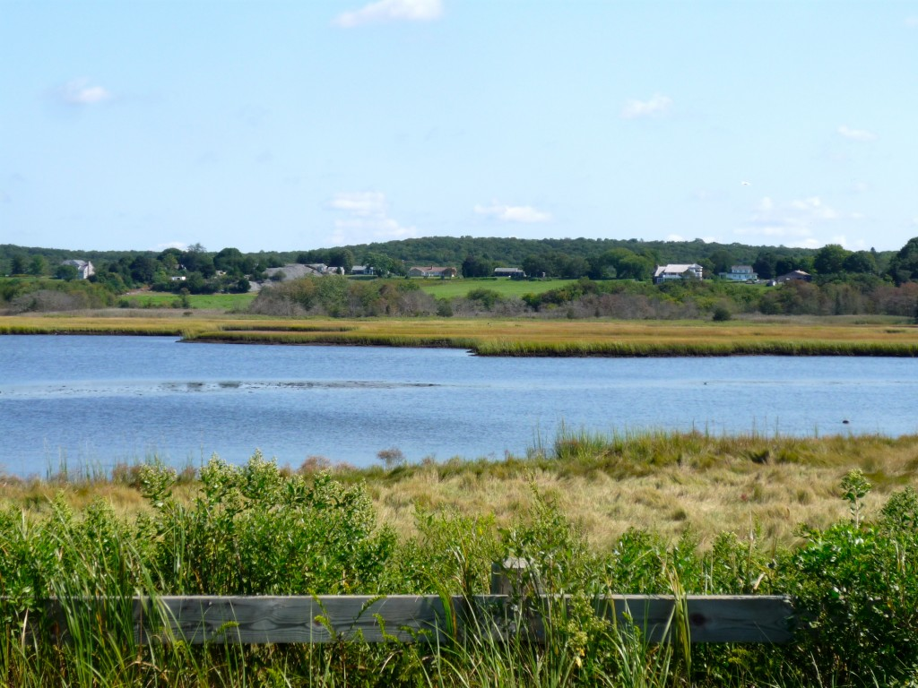 Photo of marsh, water, farm land on Seapowet Ave., Tiverton RI