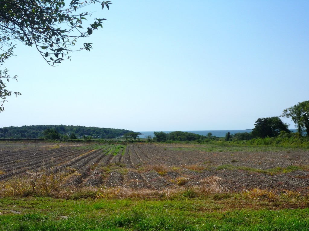 Photo of farm on Neck Rd. in Tiverton, R.I.