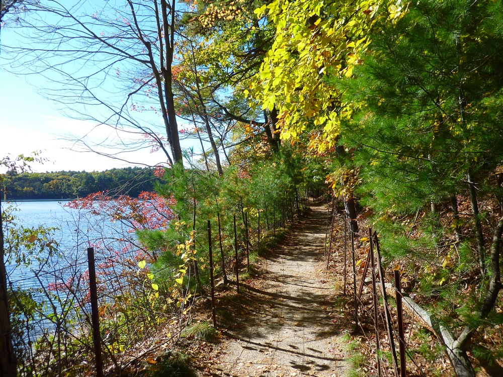 Walking a path at Walden Pond in Concord, Mass. during the fall season.
