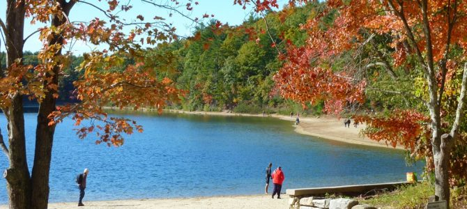 Walden Pond in Concord, Mass. Shines During the Fall Foliage Season