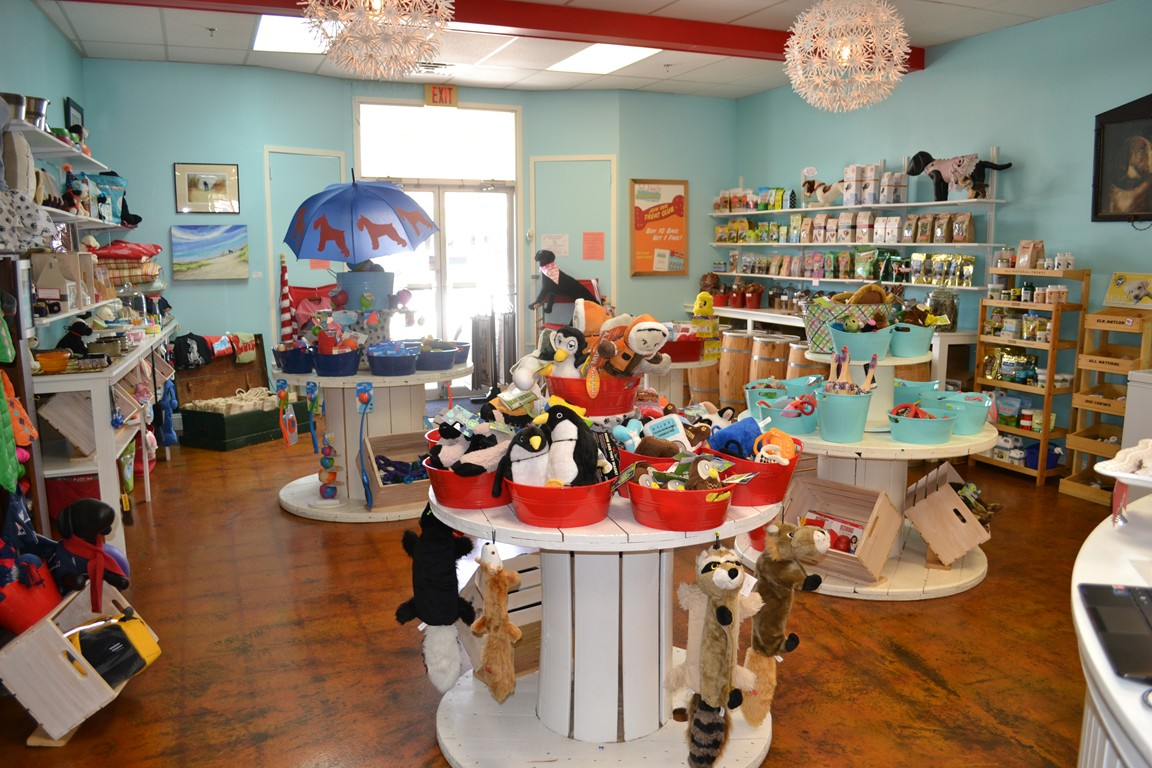 Hot diggity self serve dog wash cleaning up cape cod pups the hot diggity dog wash boutique photo by marci tyldesley solutioingenieria Gallery