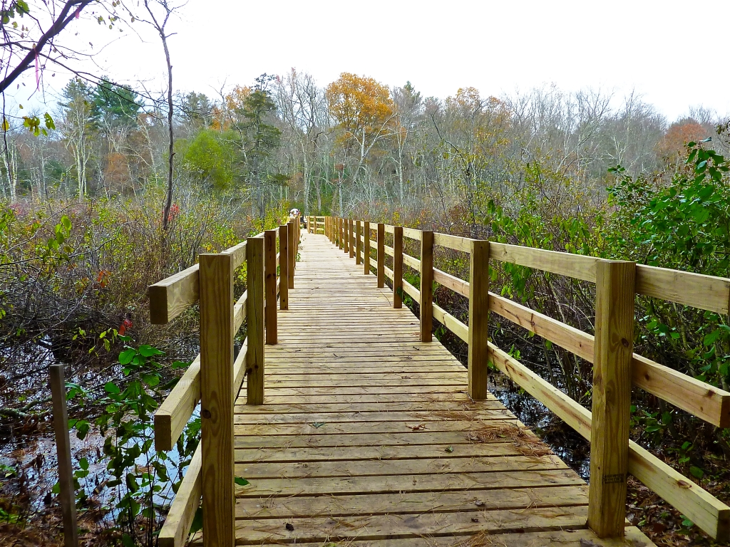 Boardwalk at the South Walpole Town Forest in Walpole, Massachusetts.