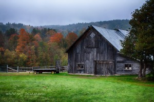 Vermont fall foliage color by a grey barn (photo by Jeff Folger)