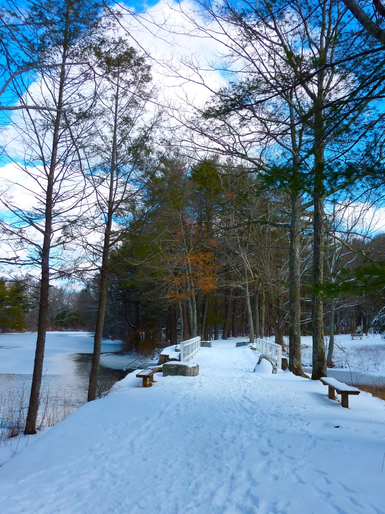 White's Bridge at the Walpole Town Forest (Walpole, Massachusetts) in the winter.