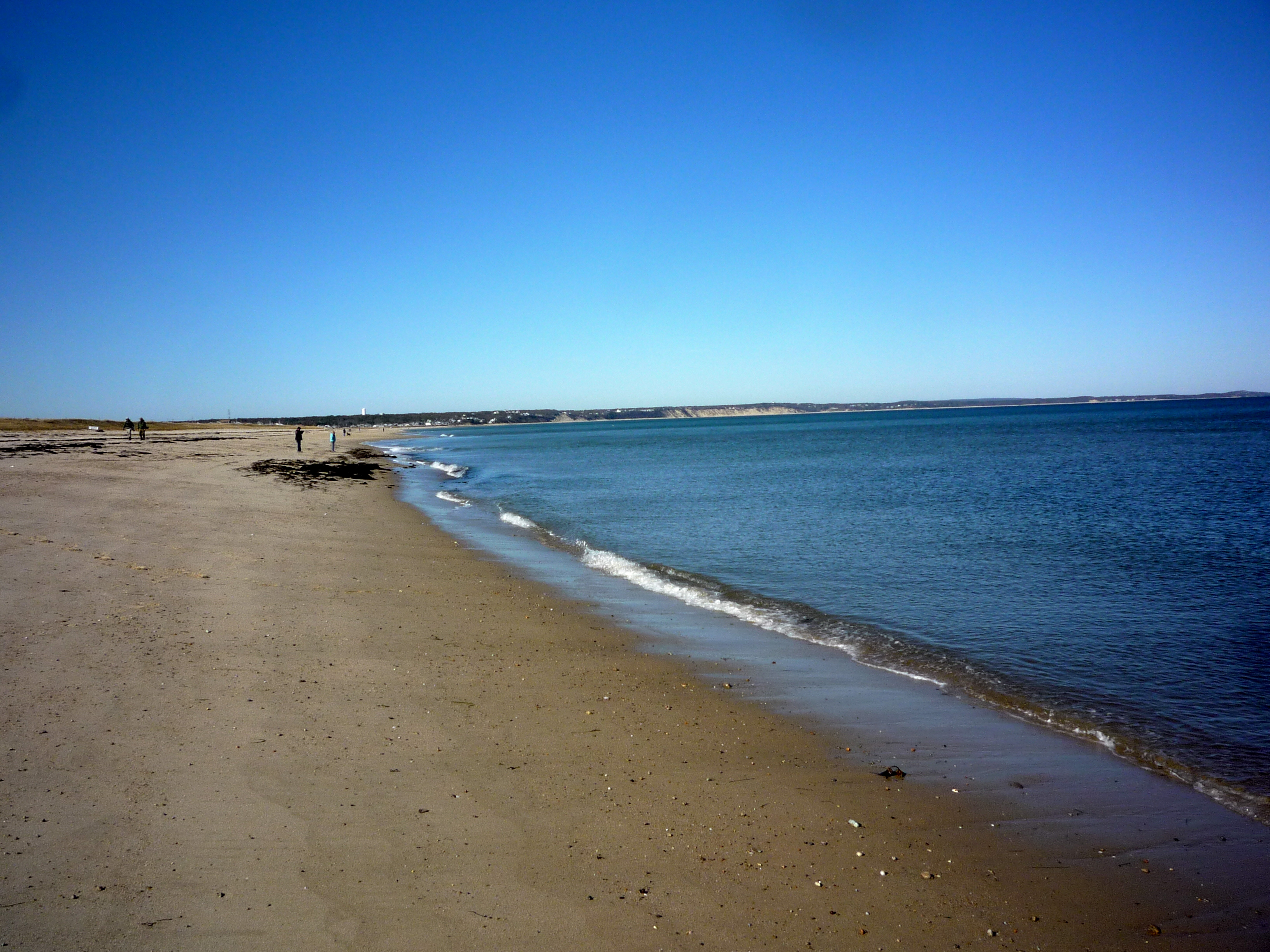 The Five Best Cape Cod Beaches The Thrifty New England Traveler