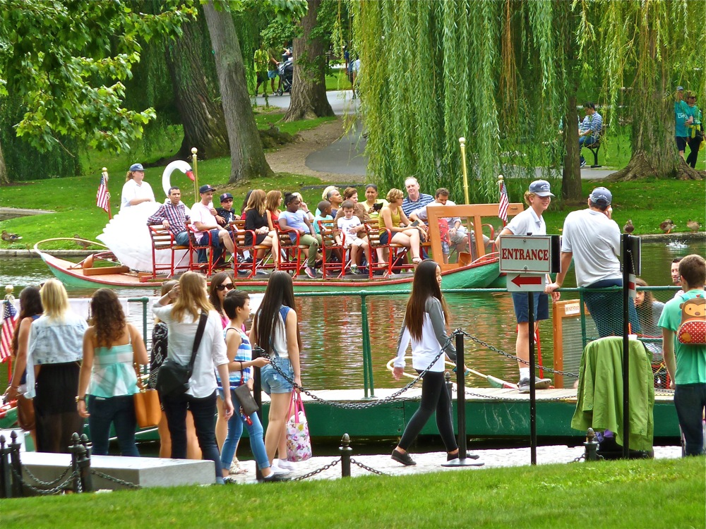 Swan Boats in Boston, Massachusetts