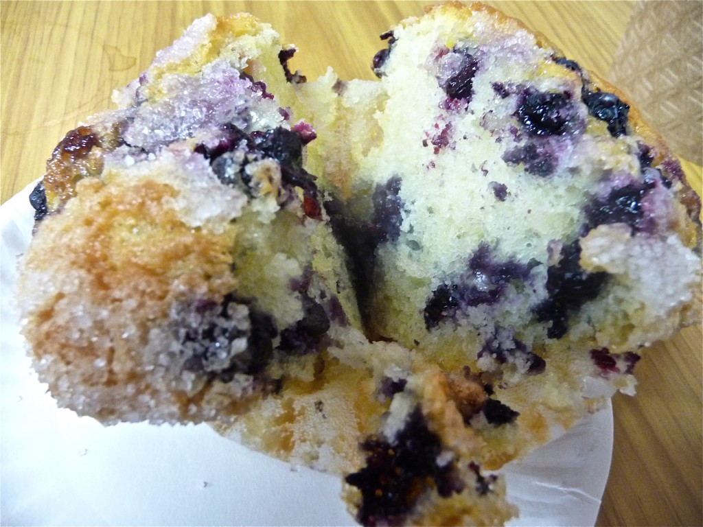 Blueberry muffin from the Muffin House in Medway MA