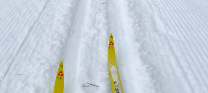 Nordic Heritage Center Offers Free Cross Country Skiing Trails in Presque Isle Maine