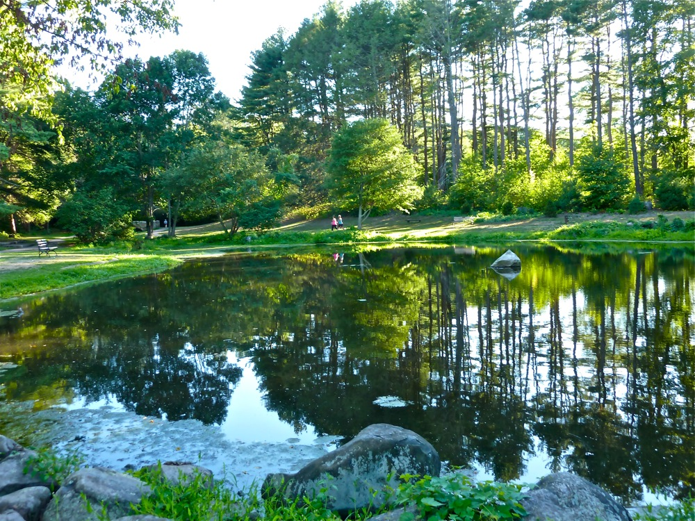 Bird Park pond, Walpole MA