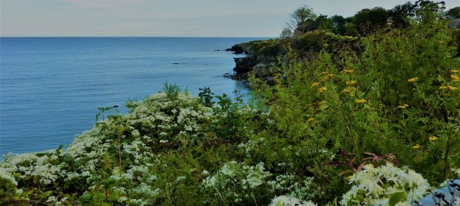 The Cliff Walk, Newport, R.I. – Updated Sept. 2019