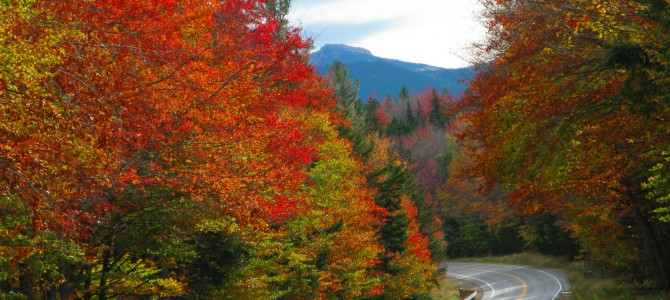 8 Kancamagus Highway Travel Q&As for the Fall Foliage Season