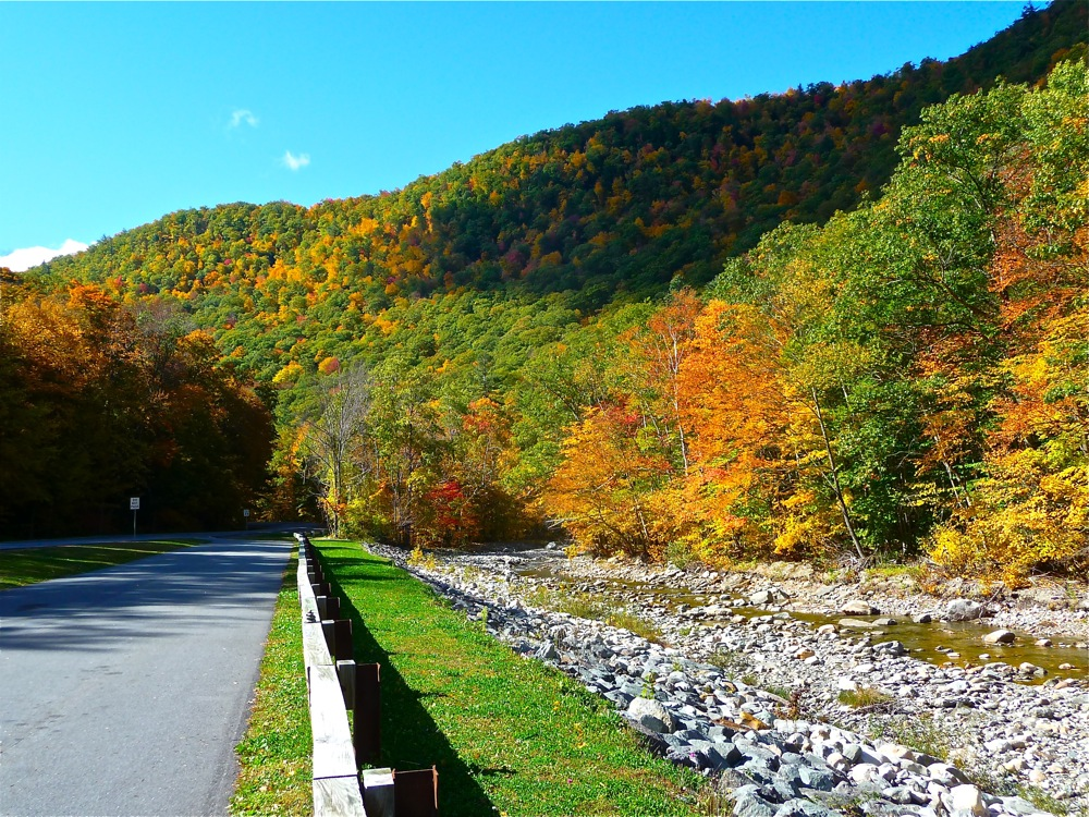 Another great stretch of road along the Mohawk Trail in the Berkshires of western Massachusetts during the fall foliage season .