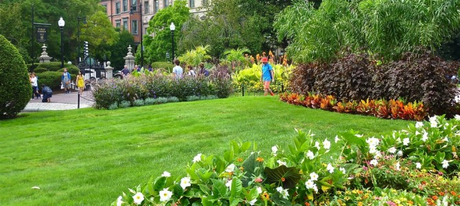 Boston Public Garden: Spectacular Flower Gardens, Swan Boats