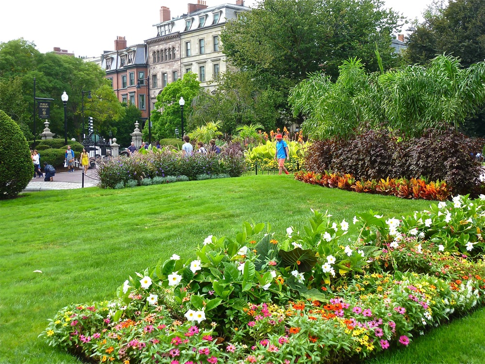 Colorful flower gardens juxtapose with historic Boston at the Boston Public Garden, Boston MA