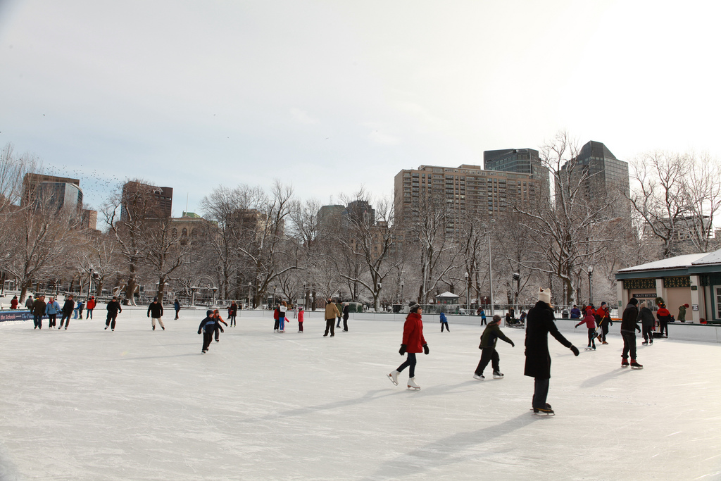 Boston Frog Pond