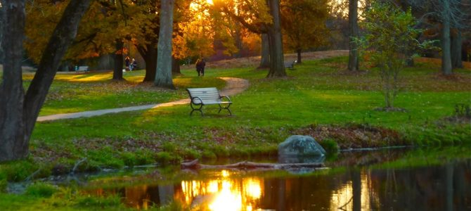 Enjoy These 6 Beautiful Walks Near Boston