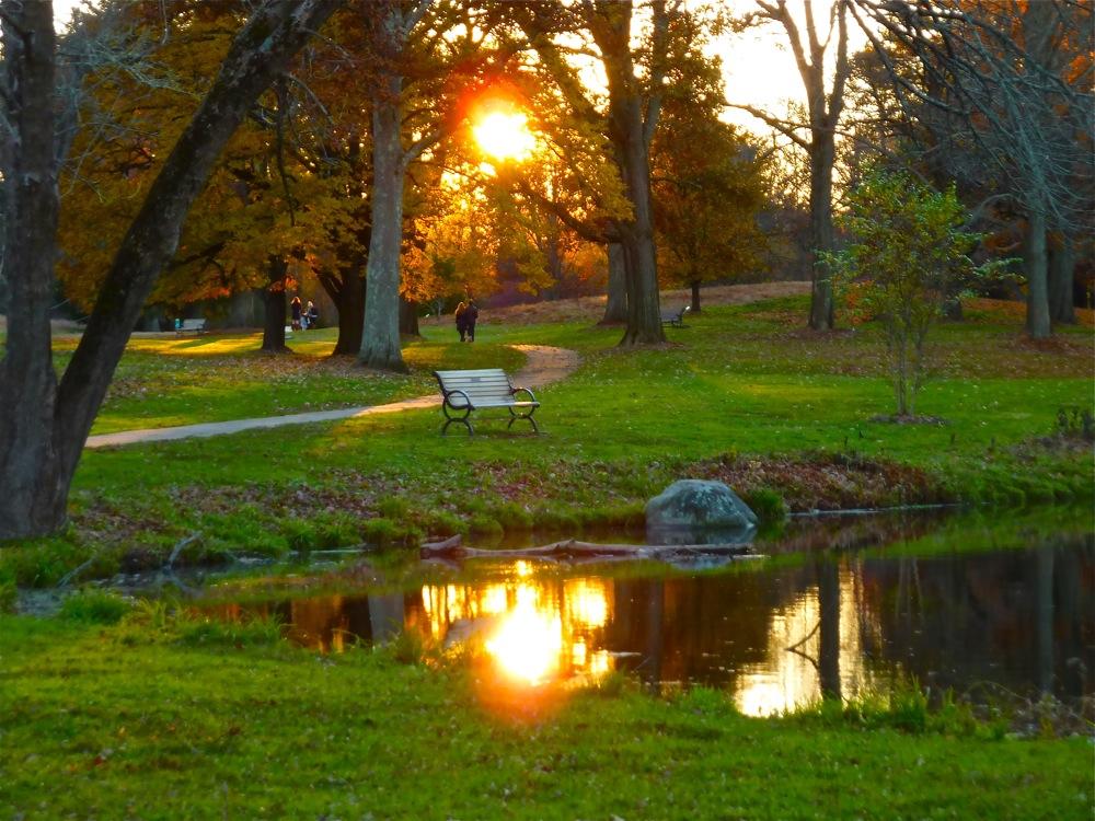 Bird Park in Walpole, Massachusetts.