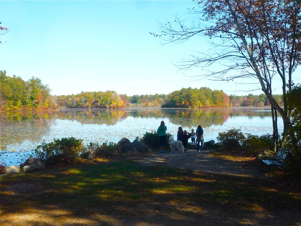 Families love Borderland State Park in Easton, Massachusetts.