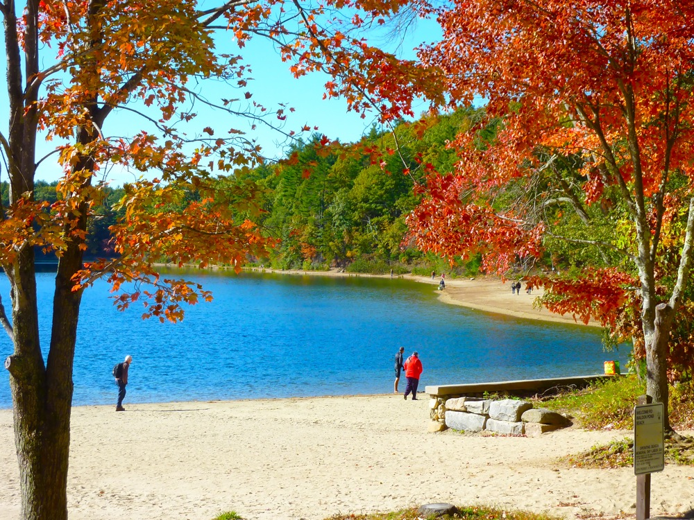 Beautiful walks near Boston: Walden Pond, Concord, Mass.