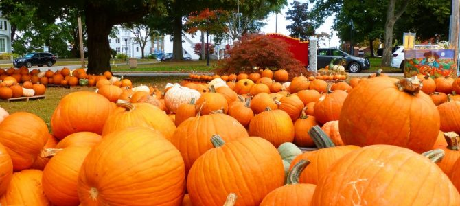 See the 2019 October Pumpkin Patch at Epiphany Parish of Walpole, Mass.