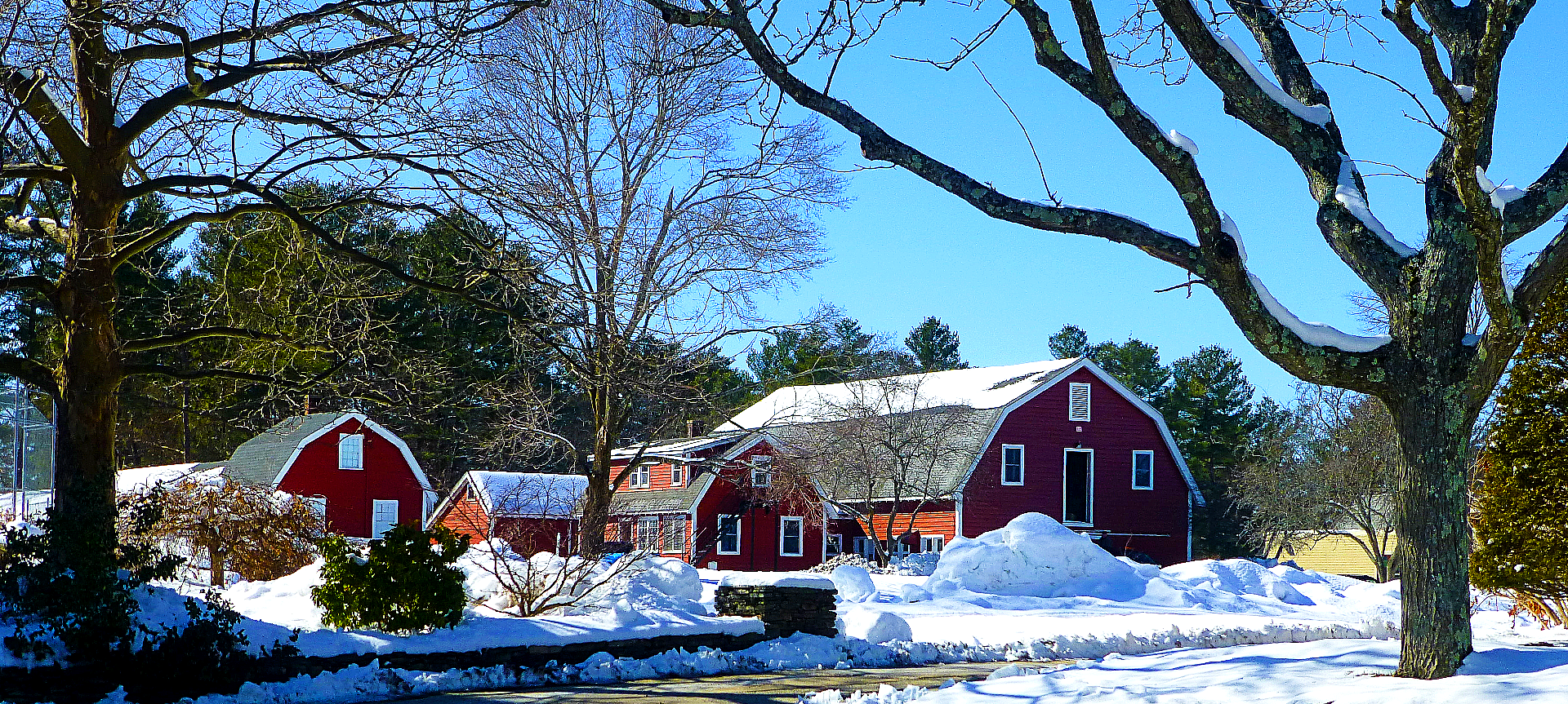 Red barn near the entrance of the Agricultural School in Walpole, Mass.