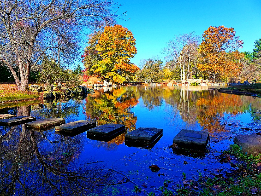 Frog Pond at Bird Park in Walpole, Massachusetts.