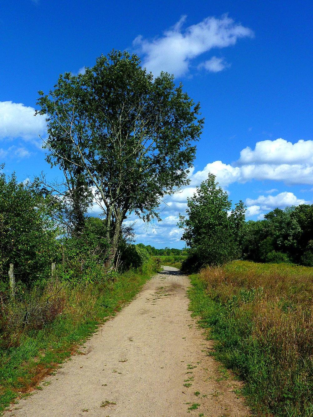 Walking trail at Adams Farm in Walpole, Mass.