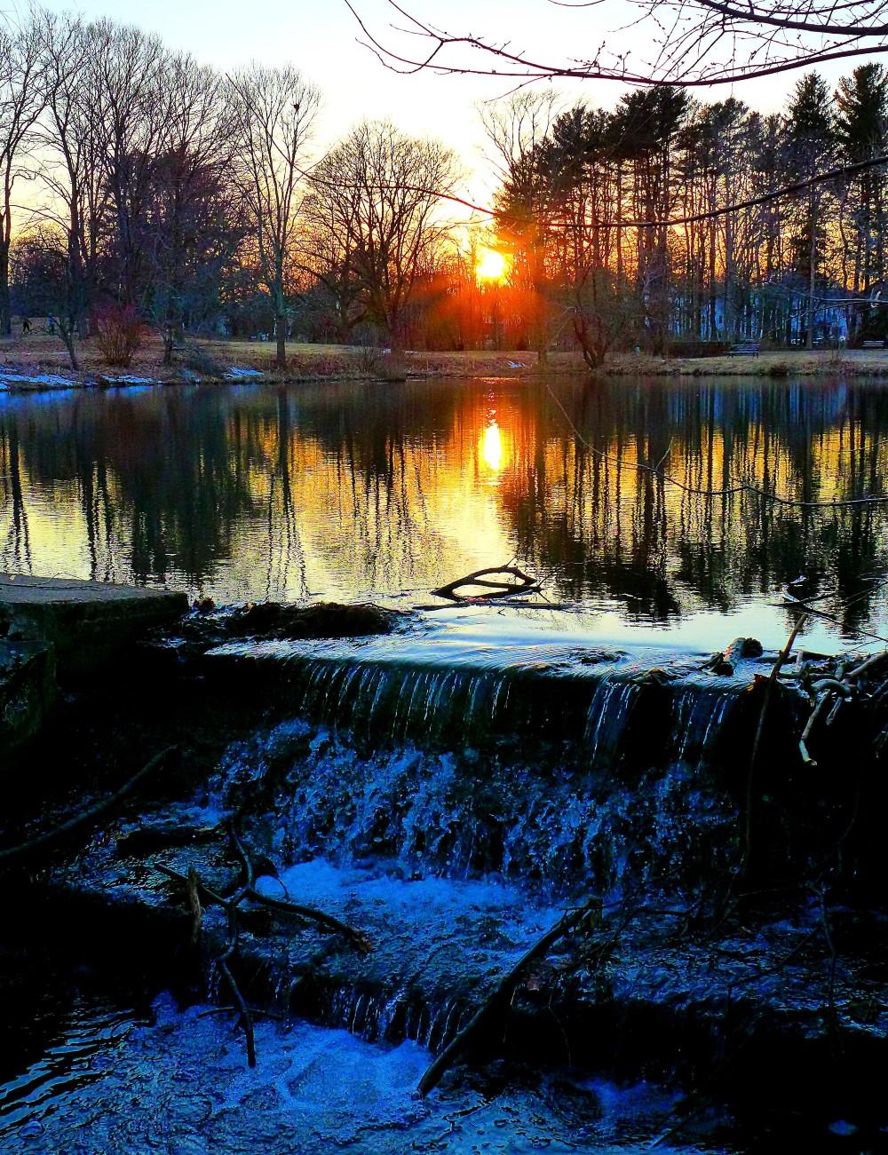 Willow Pond at Bird Park, Walpole, Mass.
