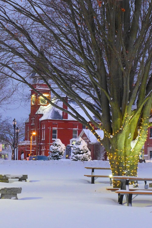 Snow on the Walpole town common, Walpole, Mass.