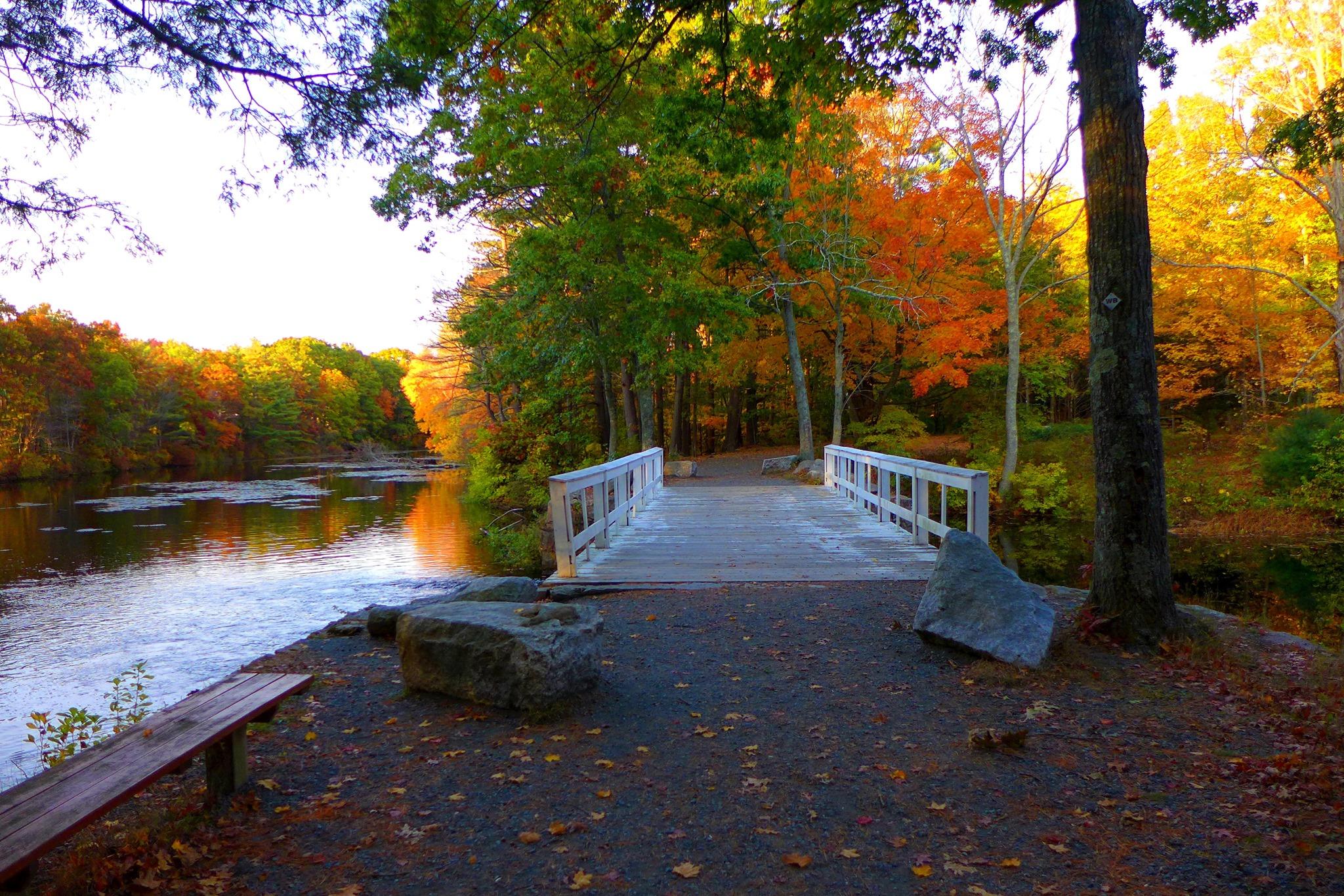 White's Bridge at Walpole Town Forest in Walpole, Massachusetts.