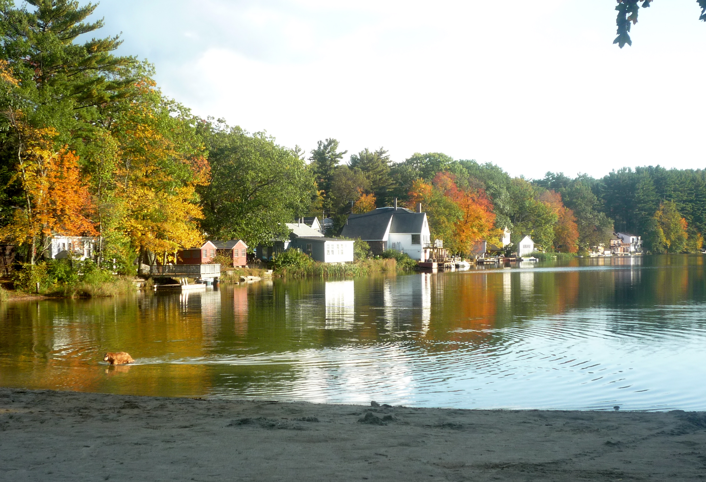 Picture of Silver Lake State Park, Hollis NH