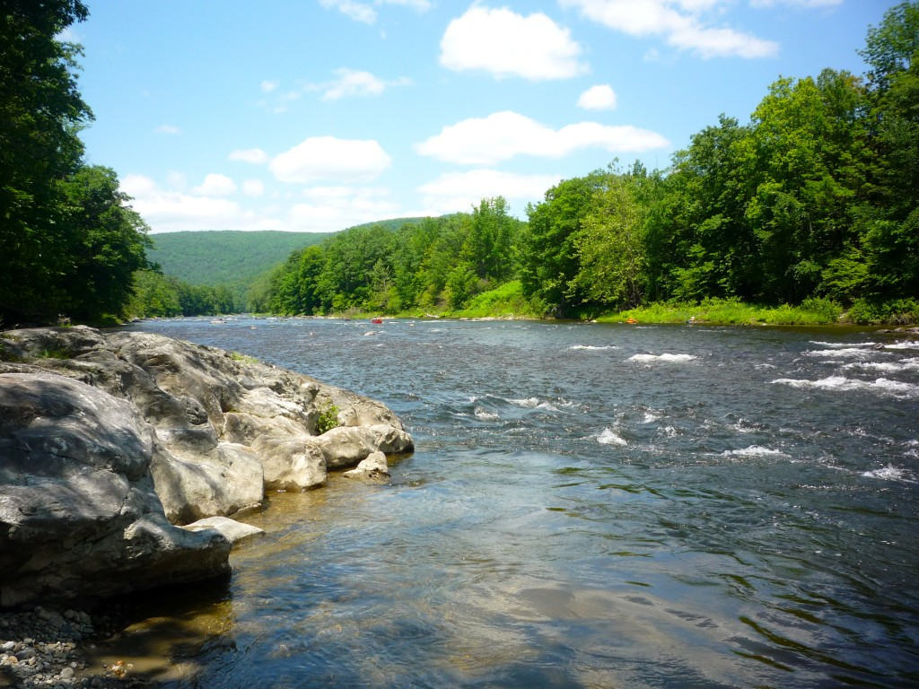 Picture of West River, Dummerston Vt.