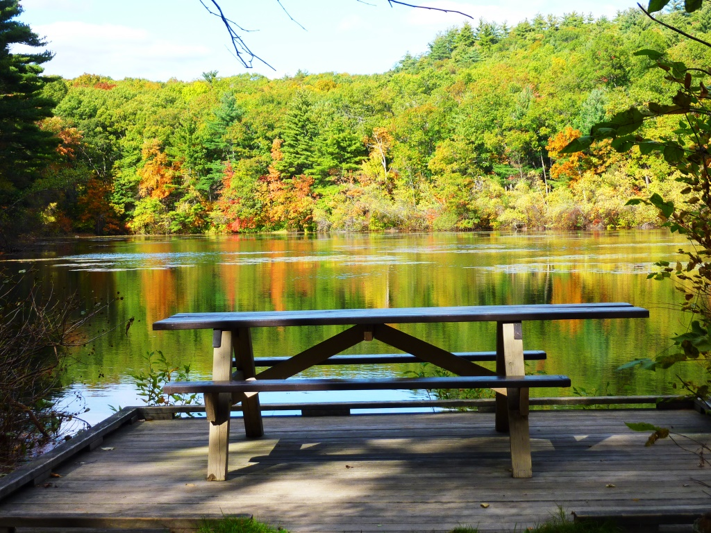 Picnic table at Chickering Pond at Rocky Woods in Medfield, Massachusetts.