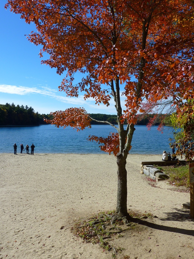 Peaceful times at Walden Pond in autumn.