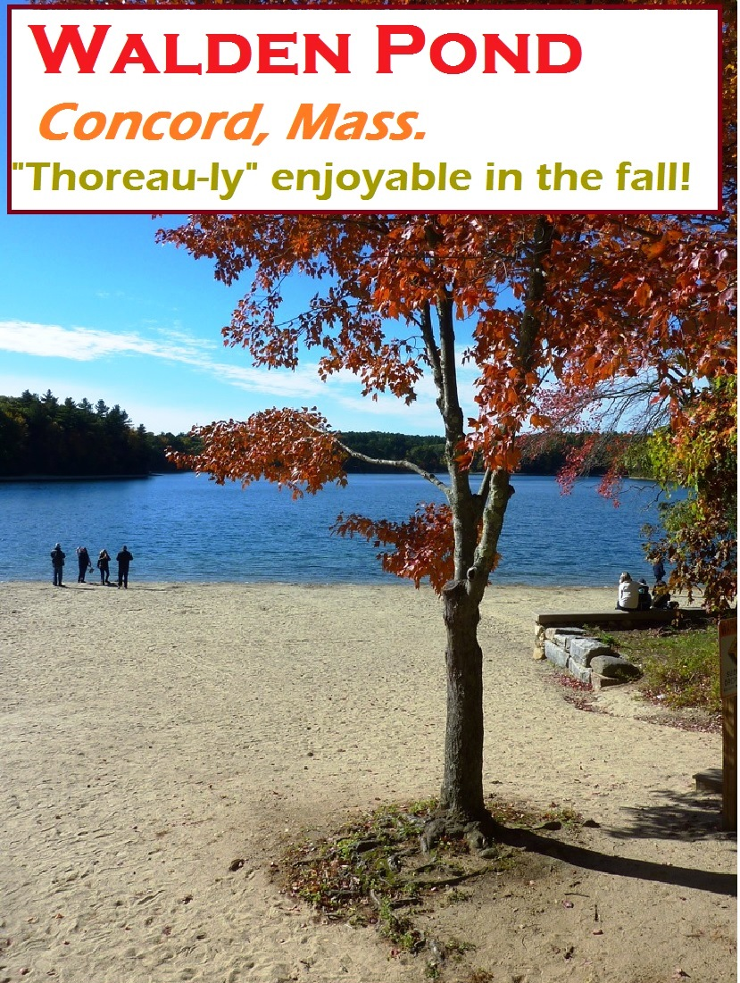 Walden Pond in Concord, Massachusetts, is simply a beautiful place to be during the fall foliage season.