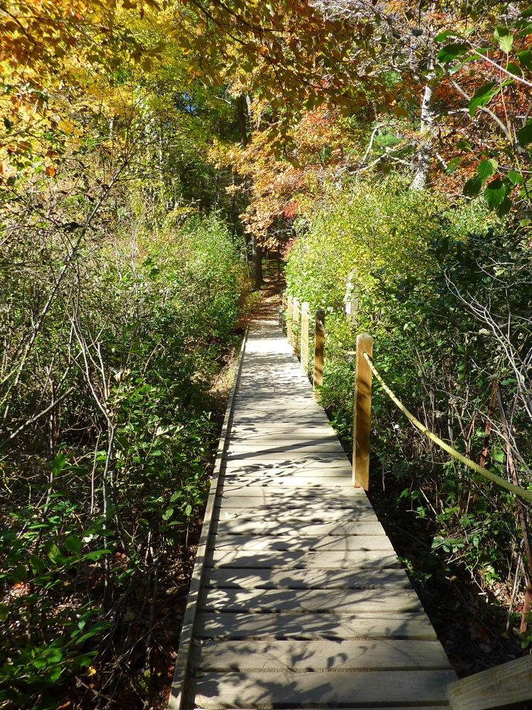Walking bridge at Walden Pond in Concord, Massachusetts.