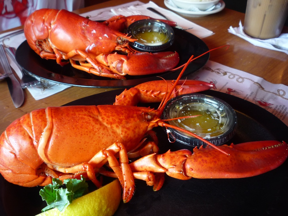 Maine Lobster from Warren's Lobster House in Kittery, Maine.